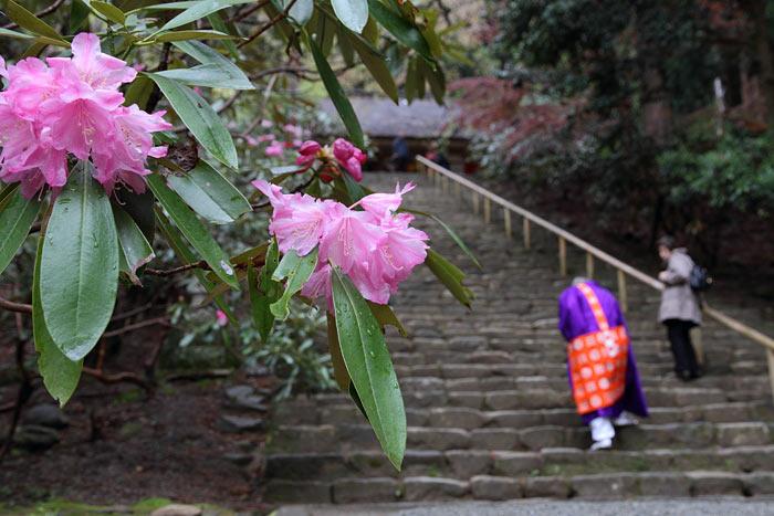 室生寺 入山式4
