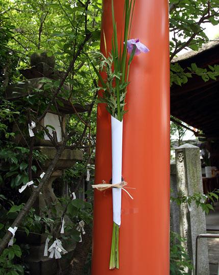 漢国神社 菖蒲祭6