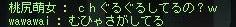 Maple110426_152301.jpg