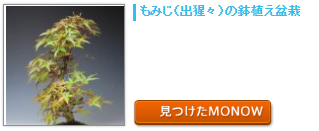 monow3_141008.png