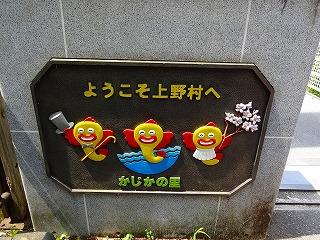 20130818061.jpg