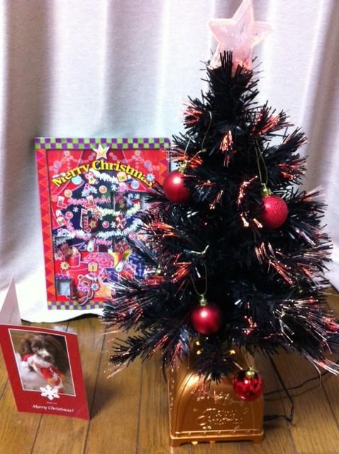 クリスマスツリー&カード