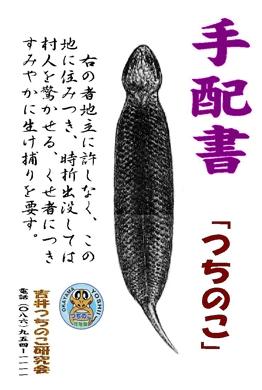 090525tsuchinoko_tehai.jpg