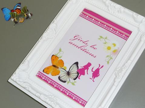 蝶の標本箱4