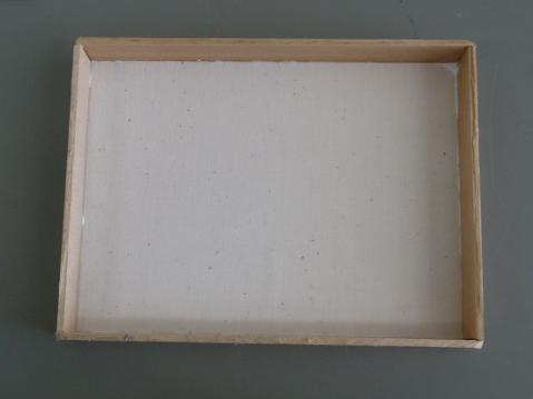 蝶の標本箱6