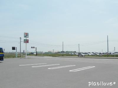 pblo0170.jpg