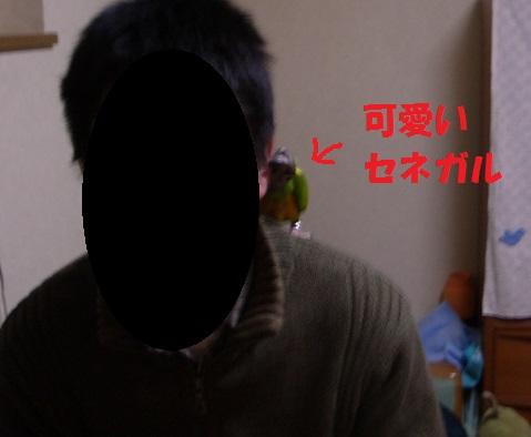 MIMIさん・ちゃっぴー2