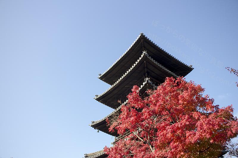 2014秋:興正寺①