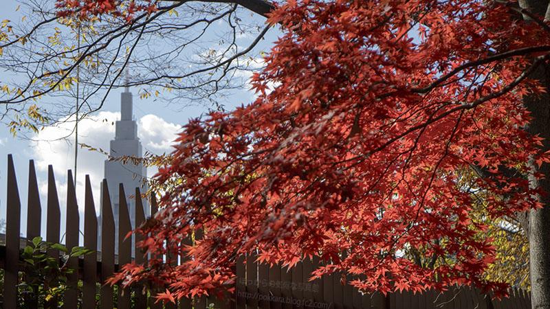 新宿の秋①