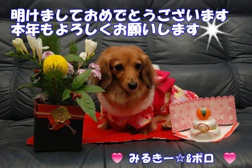 DSC_0390ー1