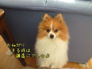 xXacE.jpg