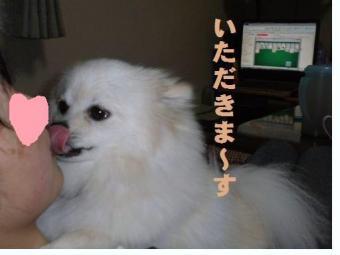4_convert_20100306205938.jpg