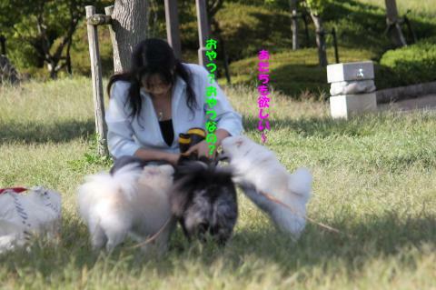 IMG_3670_convert_20101007194713.jpg