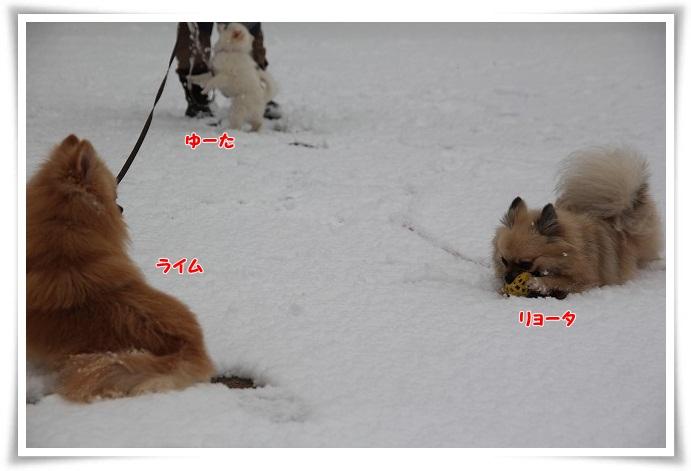 028_20130115203215.jpg