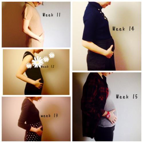 五 ヶ月 妊娠