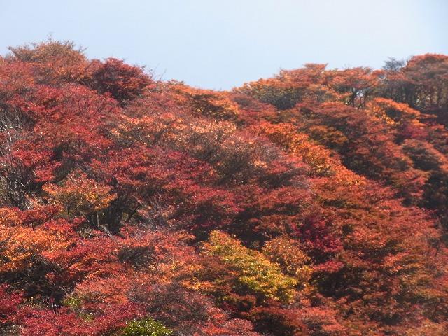 mimatayama2011 180