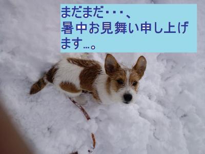 390_convert_20100909134501.jpg