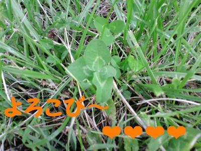 CA3C0100_convert_20110525173927.jpg