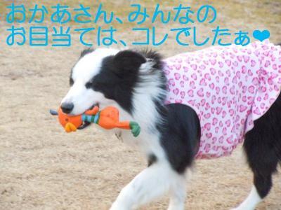 DSCN0160_convert_20110127150753.jpg