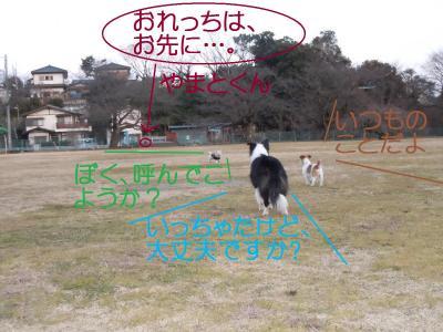 DSCN0201_convert_20110131125001.jpg