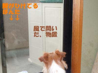 DSCN1120_convert_20110531160354.jpg