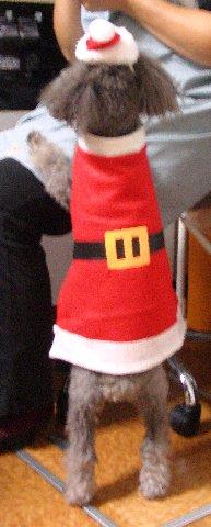 サンタがおねだり中