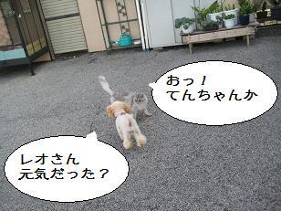 2011_0821_082139-IMG_6248.jpg