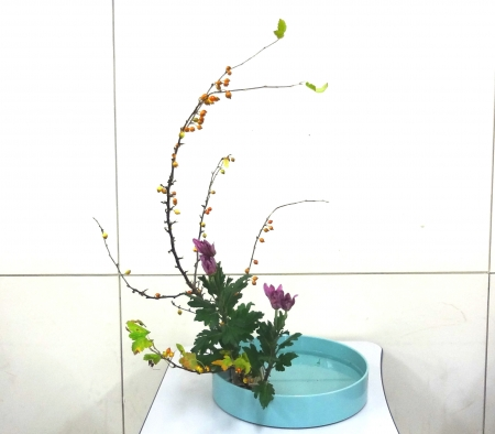 DSC01357-盛り花140922