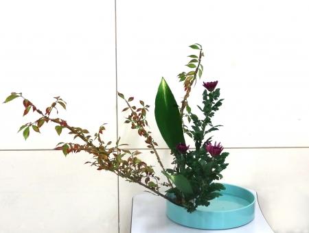 DSC01374-盛り花140929