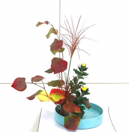 DSC01399-盛り花141006
