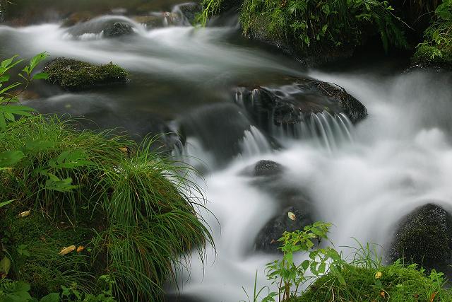 鳥取県奥大山~木谷沢渓谷