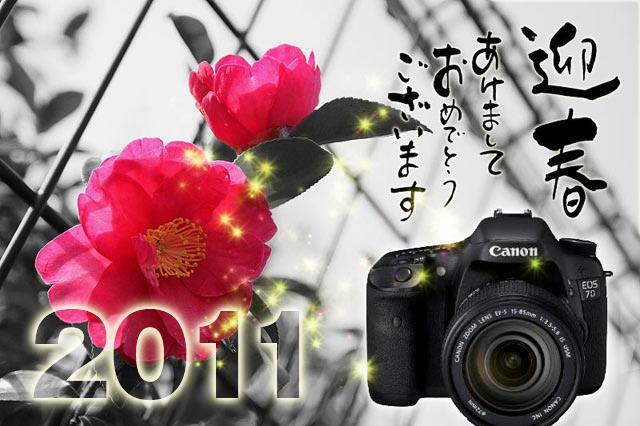 IMG_1007_20101230112502.jpg