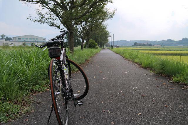自転車道路 倉吉