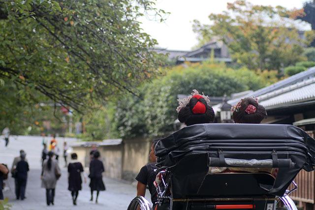 ねねの小径と石塀小路 舞妓さん 京都