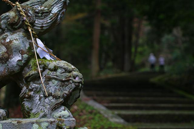 日野町~滝山公園(春編)竜王滝