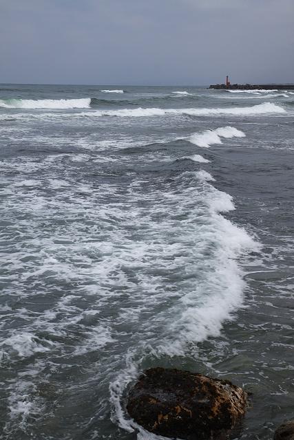 菊港の「波しぐれ三度笠」