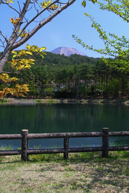 大山町~大成池