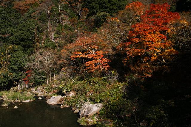 日南町 石霞渓(せっかっけい)の紅葉