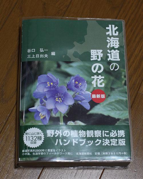 1007北海道の野の花