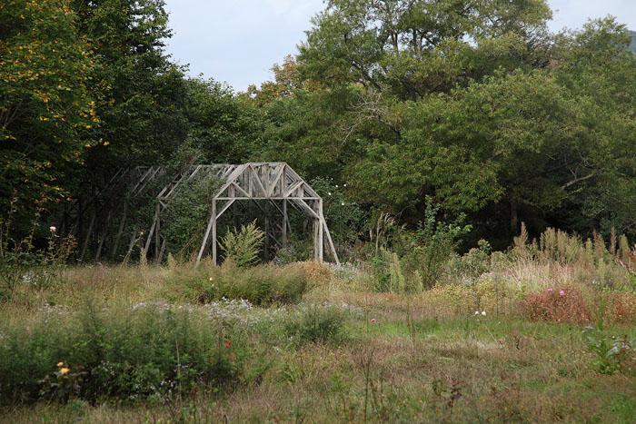 1010不思議な庭園08