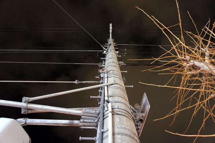 1012電柱
