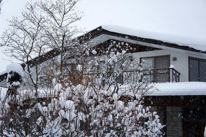 1101雪01