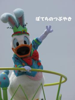 IMG_3716繧ウ繝。蜈・繧垣convert_20100429212426