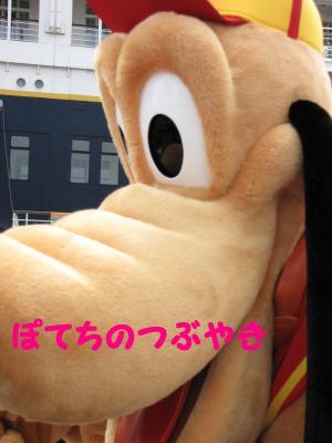 IMG_6419繧ウ繝。蜈・繧垣convert_20100822160203