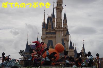 20110901 Landフォトロケ