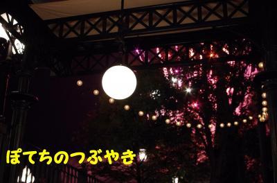 20110910 ズミック