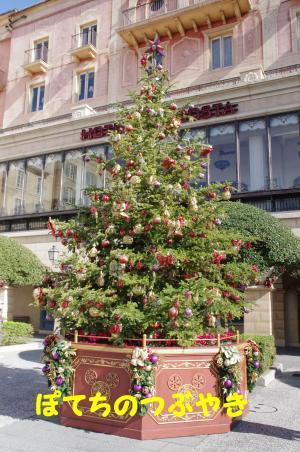 20111117 ミッキーツリー