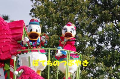 20111127 サンタ村ドナデジ
