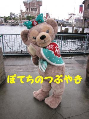20111201 メイちゃん