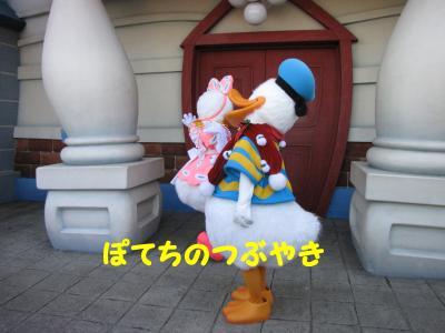 IMG_1045_20101205084106.jpg